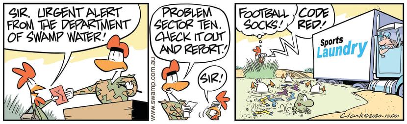 Swamp Cartoon - Department of Swamp WaterJune 17, 2020