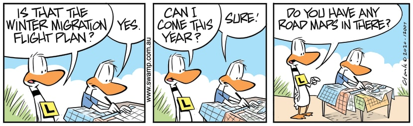 Swamp Cartoon - Ding Duck Road MapsJune 24, 2020