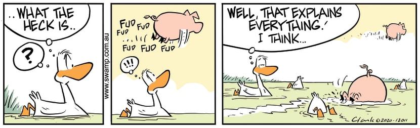 Swamp Cartoon - That Explains EverythingJune 29, 2020