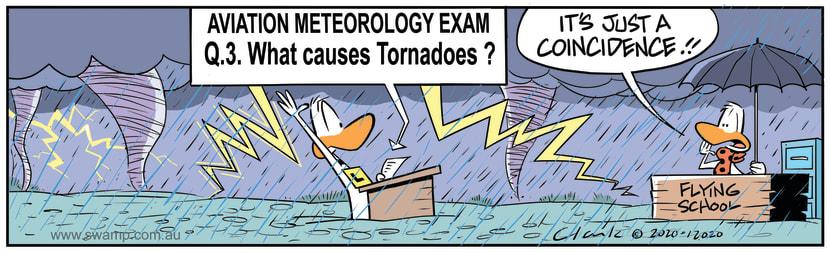 Swamp Cartoon - What Causes  TornadoesJuly 9, 2020