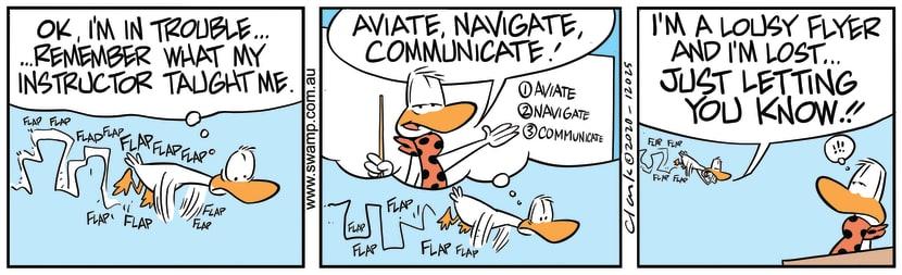 Swamp Cartoon - Aviator Duck in TroubleJuly 15, 2020