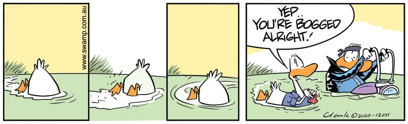 Swamp Cartoon - Wild Duck Mechanical RepairsJuly 30, 2020