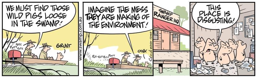 Swamp Cartoon - Must Find Wild PigsAugust 12, 2020