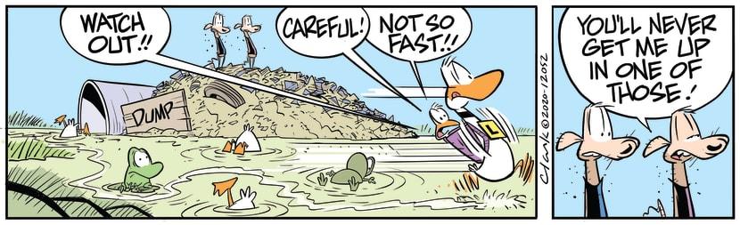Swamp Cartoon - Ding Duck Not So FastAugust 15, 2020