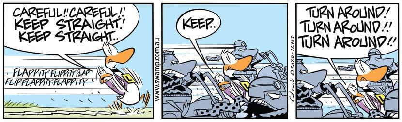 Swamp Cartoon - Ding Duck be CarefulAugust 17, 2020