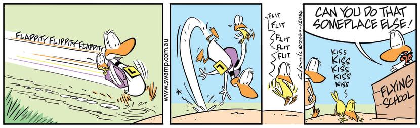 Swamp Cartoon - How to Annoy Flight InstructorAugust 20, 2020