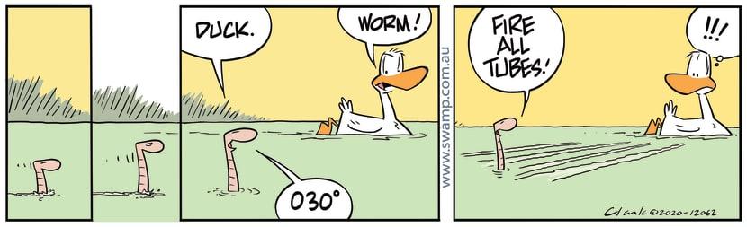 Swamp Cartoon - Worms Take Aim at DuckAugust 27, 2020