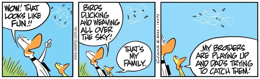 Swamp Cartoon - Ding Duck Looks Like FunSeptember 16, 2020