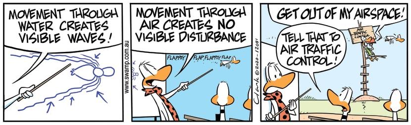 Swamp Cartoon - No Visible DisturbanceSeptember 18, 2020