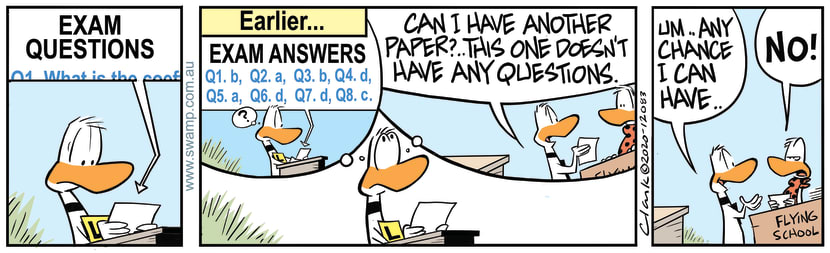 Swamp Cartoon - Exam Paper With AnswersSeptember 21, 2020