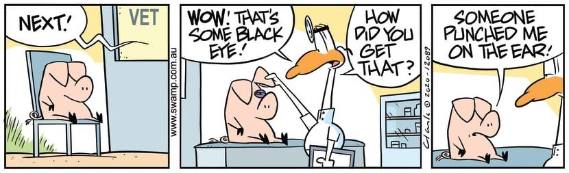 Swamp Cartoon - Pig Visits the VetSeptember 28, 2020