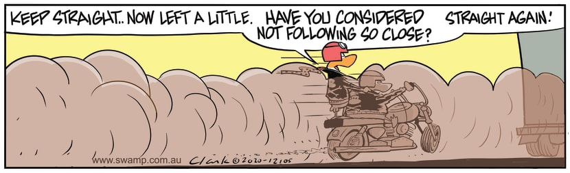 Swamp Cartoon - Wild Ducks Keep StraightOctober 16, 2020