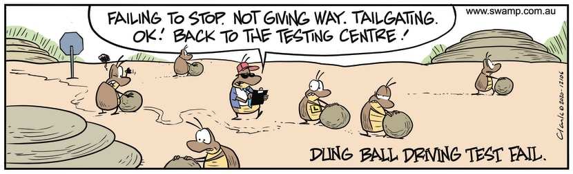 Swamp Cartoon - Dung Beetles Driving TestOctober 17, 2020