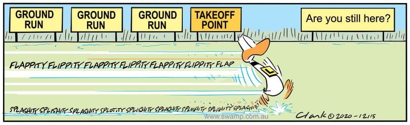 Swamp Cartoon - Ding Duck Take-off PointOctober 28, 2020