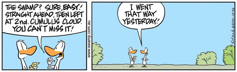 Swamp Cartoon - Aviator Duck DirectionsNovember 17, 2020