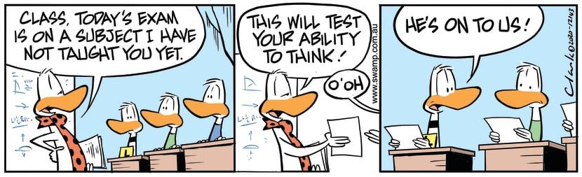 Swamp Cartoon - Flight Theory Exam QuestionNovember 30, 2020