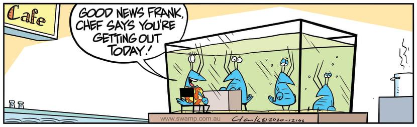 Swamp Cartoon - Good News for Frank CrayfishDecember 3, 2020