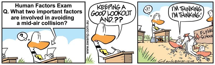 Swamp Cartoon - Keeping A Good LookoutDecember 7, 2020