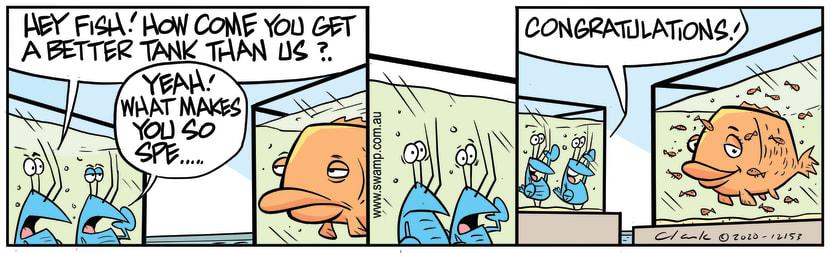 Swamp Cartoon - Bob Crayfish ComplainsDecember 11, 2020
