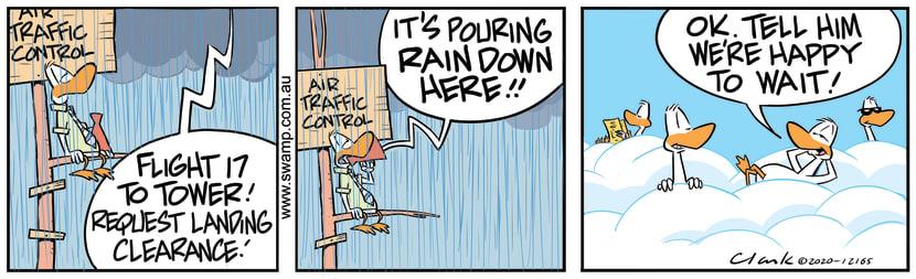 Swamp Cartoon - Pouring Rain on AirstripJanuary 4, 2021