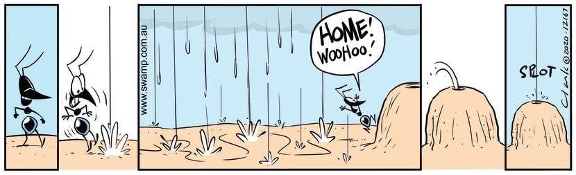 Swamp Cartoon - Here Comes the RainJanuary 6, 2021