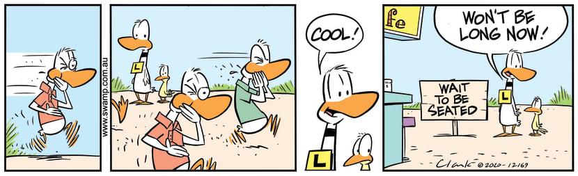 Swamp Cartoon - Ding Duck Wait To Be SeatedJanuary 8, 2021