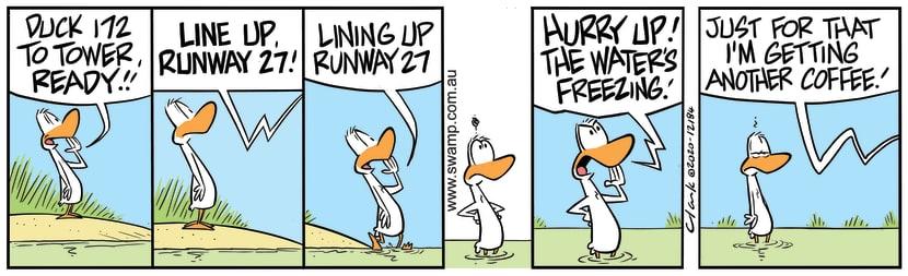 Swamp Cartoon - Lining up Runway 27January 26, 2021