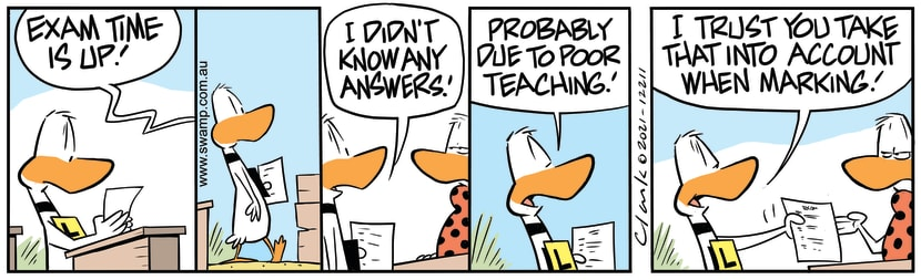 Swamp Cartoon - Ding's Exam Time Is UpFebruary 25, 2021
