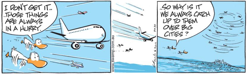 Swamp Cartoon - Aviator Ducks Overtaken By JetsMay 13, 2021