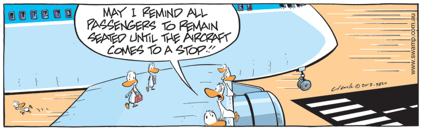 Swamp Cartoon - Aircraft Has Come to Complete StopJune 23, 2021