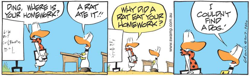 Swamp Cartoon - Where is Your Homework?June 25, 2021
