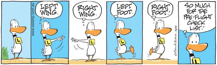 Swamp Cartoon - Pre-flight ChecklistJuly 2, 2021