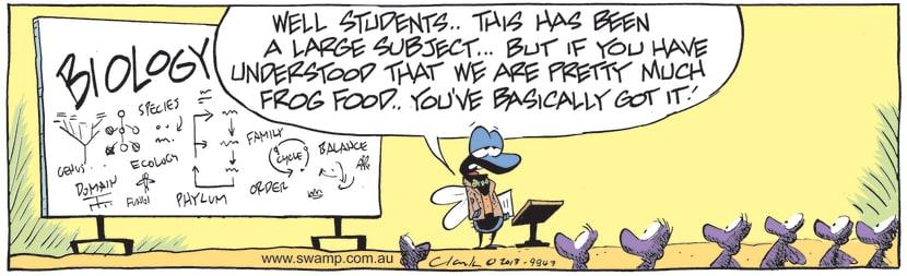 Swamp Cartoon - Essentially Frog FoodJuly 3, 2021