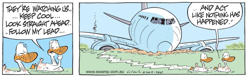 Swamp Cartoon - Aviator Ducks Quietly Swim AwayJuly 6, 2021