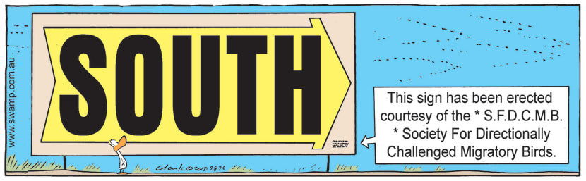 Swamp Cartoon - Sign with Huge WritingJuly 21, 2021