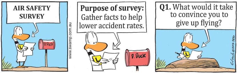 Swamp Cartoon - Lower Accident RatesJuly 24, 2021