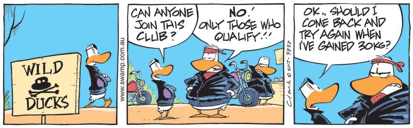 Swamp Cartoon - Wild Ducks MembershipJuly 28, 2021