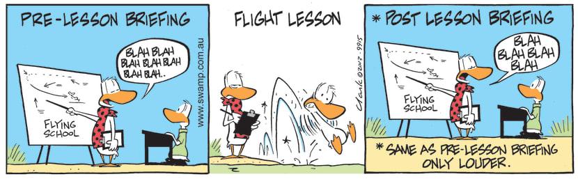 Swamp Cartoon - Pre-Lesson BriefingAugust 6, 2021