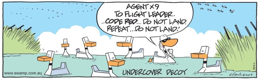 Swamp Cartoon - Undercover Amongst the DecoysAugust 10, 2021