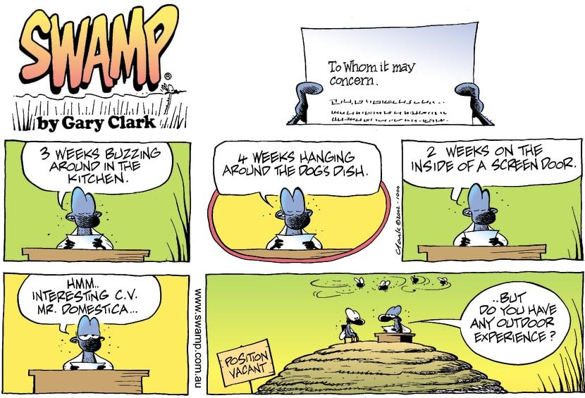 Swamp Cartoon - Fly WorkSeptember 8, 2002
