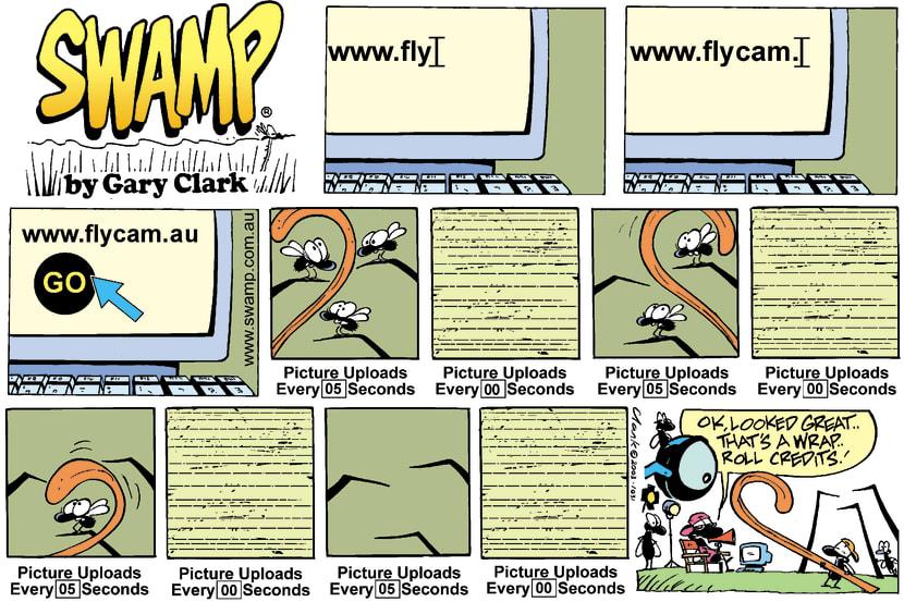 Swamp Cartoon - www.flycam.auApril 13, 2003