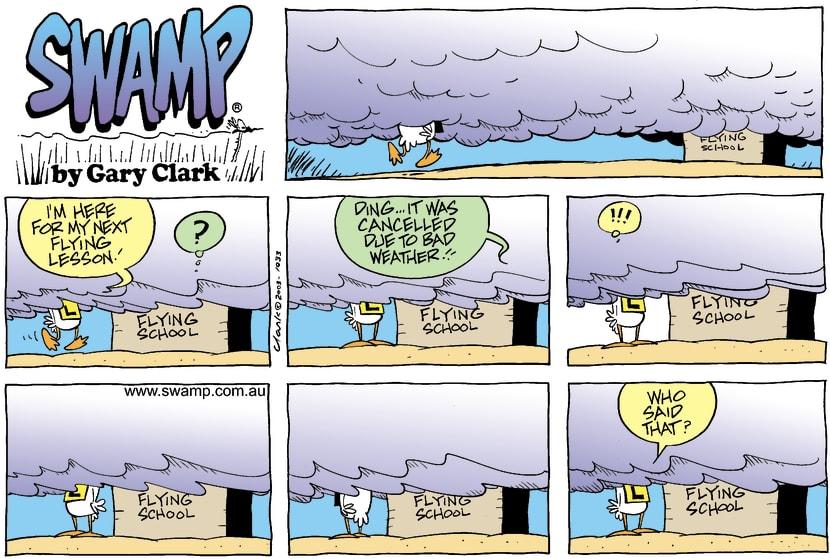 Swamp Cartoon - Next LessonApril 27, 2003