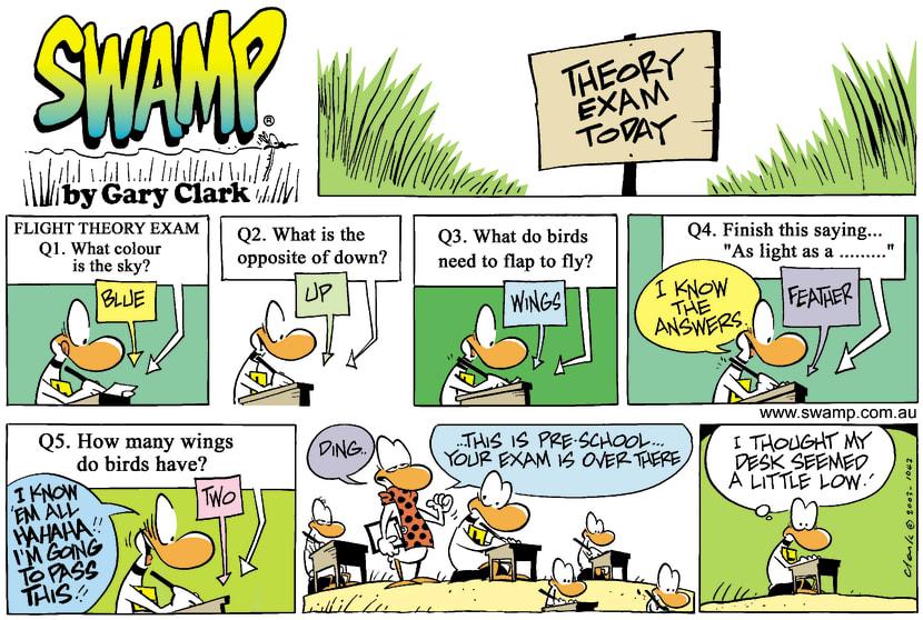 Swamp Cartoon - Easy ExamJuly 6, 2003
