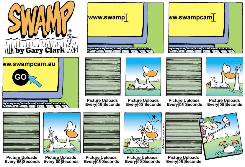 Swamp Cartoon - SwampCamOctober 5, 2003