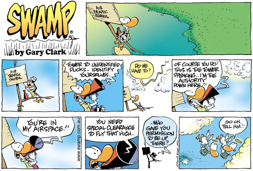 Swamp Cartoon - AirspaceJanuary 4, 2004