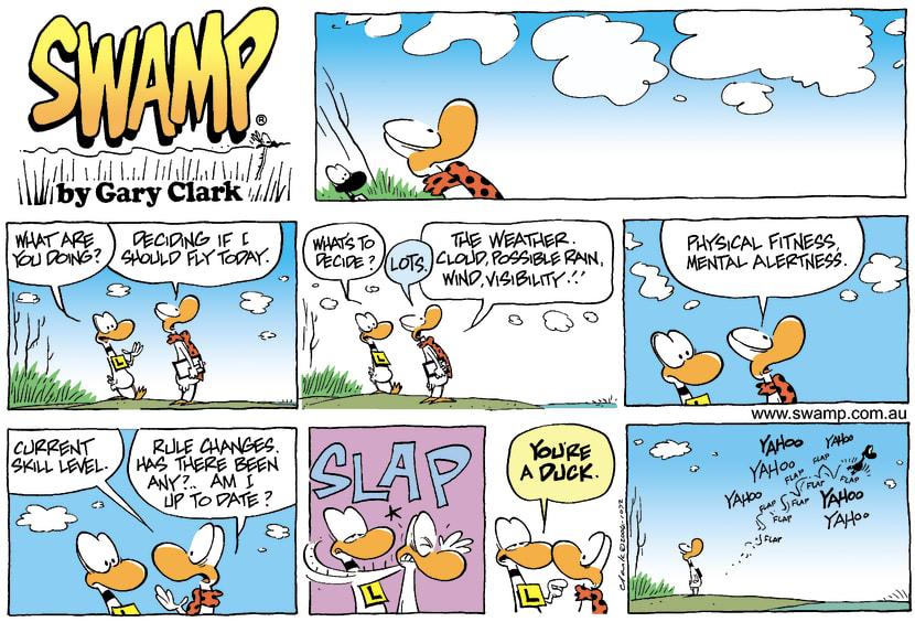Swamp Cartoon - DecisionJanuary 25, 2004
