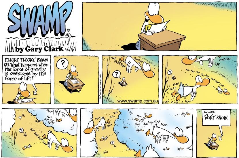 Swamp Cartoon - Theory ExamJune 6, 2004