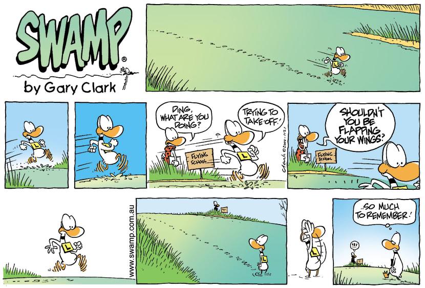 Swamp Cartoon - Flying Attempt Ad NauseumJanuary 2, 2005