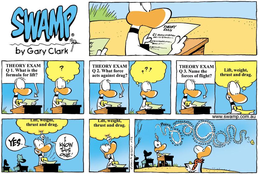 Swamp Cartoon - Exam IncidentDecember 25, 2005