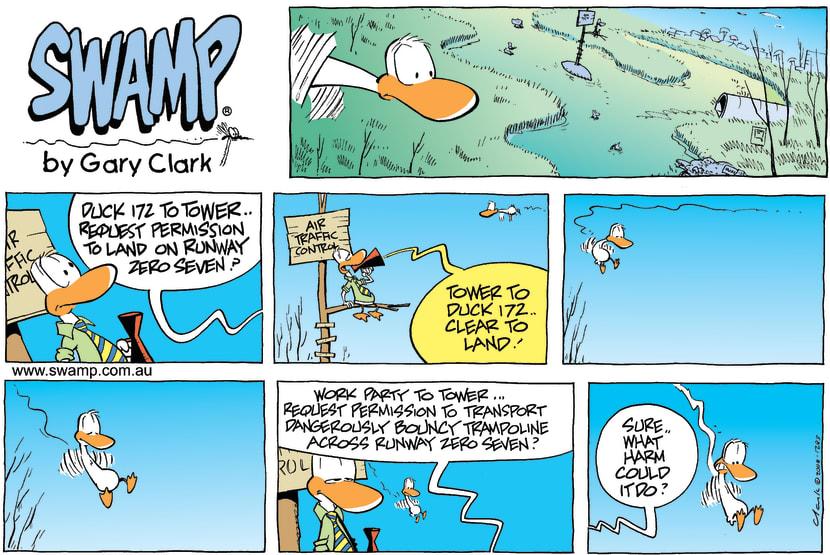 Swamp Cartoon - False LandingFebruary 24, 2008